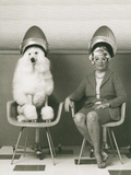 Coneheads Lady and Poodle in Dryers, France Metal Print