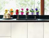 Pensées multicolores Adesivo per finestre