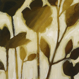 Bronze Botanical I Limited Edition on Canvas by Elise Remender