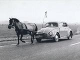 Pony Pulling Volkswagon, France - Şasili Gerilmiş Tuvale Reprodüksiyon