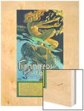 Fiammiferi Senza Fosforo Wood Print by Adolfo Hohenstein