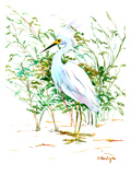 Heron 3 Art by Suren Nersisyan