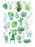 Plantas Láminas por Paula Mills
