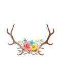 Floral Antlers Posters by Samantha Ranlet