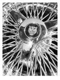 Jaguar Spokes Gicléetryck av Murray Bolesta