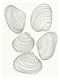 Clams Prints by Jorey Hurley