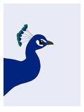 Peacock Posters by Jorey Hurley