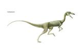 Dinosaur Posters van  Encyclopaedia Britannica