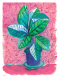 Plant Pot Poster by Paula Mills