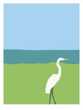 Egret Prints by Jorey Hurley