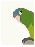 Parrot Poster di Jorey Hurley