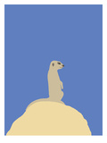 Meerkat Giclée-tryk af Jorey Hurley
