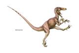 Dinosaur Posters by  Encyclopaedia Britannica