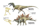 Dinosaur Prints by  Encyclopaedia Britannica