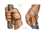 Human Hand Grips. Evolution Posters by  Encyclopaedia Britannica
