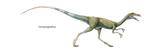 Dinosaur Print by  Encyclopaedia Britannica