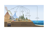 Carbon Cycle, Atmosphere, Biosphere, Earth Sciences Posters por  Encyclopaedia Britannica