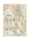 Plate 81. Map of Florida. United States. Inset Maps of Jacksonville Gicléedruk van  Encyclopaedia Britannica