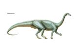 Dinosaur Prints by  Encyclopaedia Britannica