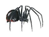 Black Widow (Latrodectus), Spider, Arachnids Posters