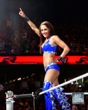 Brie Bella 2014 Action Photo