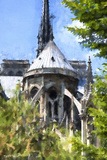 Notre Dame Cathedral in Summer Giclee Print by Philippe Hugonnard