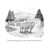 """I don't like large groups. I can never remember what our plural is."" - New Yorker Cartoon Premium Giclee Print by Tom Toro"