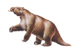 Megatherium, Extinct Ground Sloth, Mammals Prints by  Encyclopaedia Britannica
