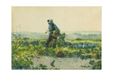 For to Be a Farmer's Boy, 1887 Giclee Print by Winslow Homer