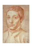 Portrait of His Son, Antonio Carracci, 1592-95 Giclee Print by Agostino Carracci