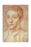 Portrait of His Son, Antonio Carracci, 1592-95 Giclee Print by Agostino Carracci