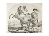 Wild Horses Fighting, C.1820 Giclee Print by Antoine Charles Horace Vernet