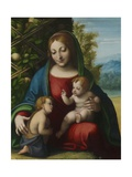 Virgin and Child with the Young Saint John the Baptist, C.1515 Giclee Print by  Correggio