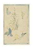 Sketches of Snails, Flowering Plant, C.1880 Giclee Print by Edouard Manet
