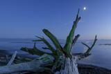 Canada, British Columbia, Vancouver Island, Juan Defuca Straight, French Beach, Photographic Print by Christian Heeb