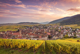 Sunset over the Vineyards Surrounding Riquewihr, Alsace, France Photographic Print by Matteo Colombo