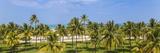 Jane Sweeney - U.S.A, Miami, Miami Beach, South Beach, Ocean Drive, View over Lummus Park Towards South Beach Fotografická reprodukce