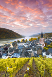 Sunrise over Vineyards, Bacharach, Rhineland-Palatinate, Germany Photographic Print by Matteo Colombo