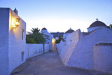 Churches at Dusk with the Monastery of St. John in the Background, Patmos, Dodecanese Photographic Print by Neil Farrin