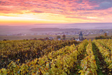 Colorful Sunrise over the Vineyards of Ville Dommange, Champagne Ardenne, France Photographic Print by Matteo Colombo