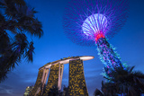 Singapore, Gardens by the Bay, Super Tree Grove and Marina Bay Sands Hotel, Dusk Photographic Print by Walter Bibikow