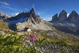 Le Tre Cime Di Laveredo, Dolomites, Trentino, South Tyrol, Italy Photographic Print by Katja Kreder