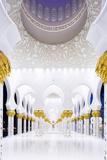 United Arab Emirates, Abu Dhabi Photographic Print by Nick Ledger