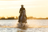 Gardian, Cowboy and Horseman of the Camargue, Camargue, France Fotografie-Druck von Peter Adams