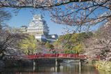 Himeji Castle (Unesco World Heritage Site), Himeji, Kansai, Honshu, Japan Lámina fotográfica por Ian Trower
