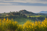 Hilltop Village Nr Asciano, Tuscany, Italy Photographic Print by Peter Adams