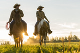 Cowboys Riding across Grassland with Moutains Behind, Early Morning, British Colombia, B.C., Canada Photographic Print by Peter Adams