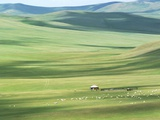 Evenk people's summer pasture, Old Barag Banner, Hulunbuir, Inner Mongolia Autonomous Region, China Photographic Print