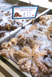 Octopus in the Market, Kalymnos, Dodecanese, Greek Islands, Greece, Europe Photographic Print by Neil Farrin