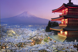 Japan, Yamanashi Prefecture, Fuji-Yoshida, Chureito Pagoda, Mt Fuji and Cherry Blossoms Fotoprint van Michele Falzone